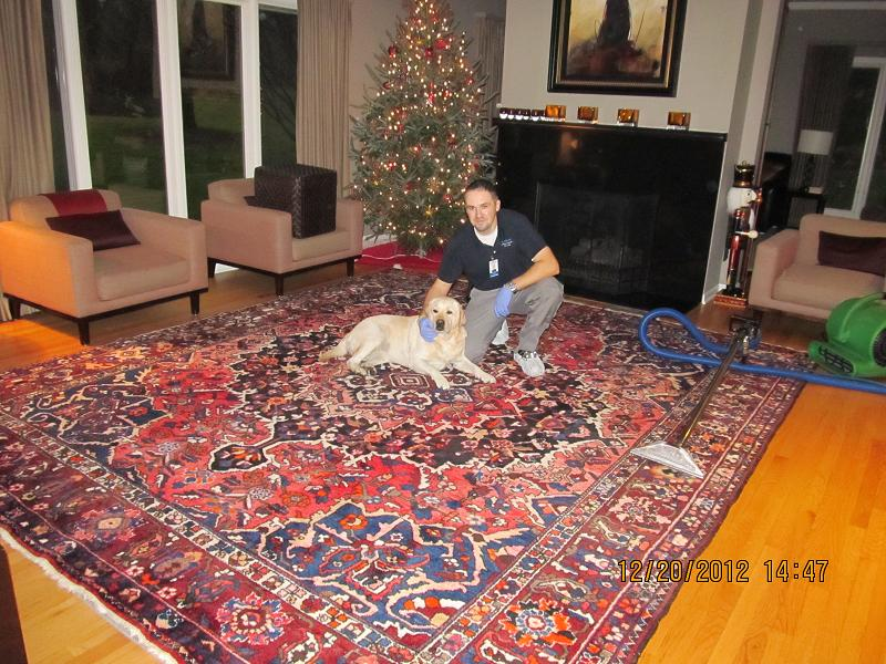 Professional Area Rug Cleaning Services In Kijiji
