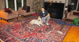 Area Rugs Cleaning